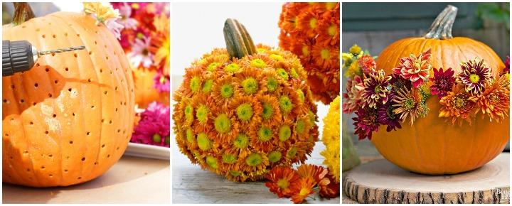 mumpkin flower pumpkin