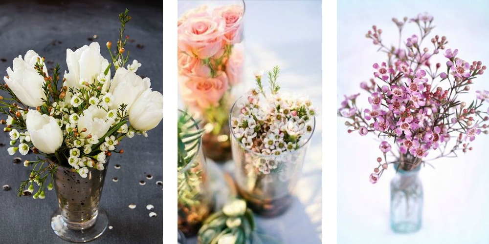Diy Wax Flower Arrangements